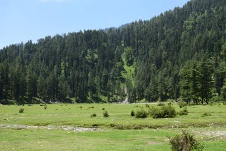 Shimla manali 5 days tour from Delhi